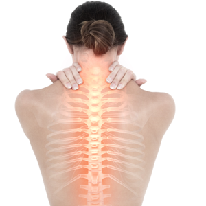 Spine image_Duffy Chiropractor_300